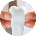 conservativa endodonzia odontoiatria falmed centro medico pescara circle